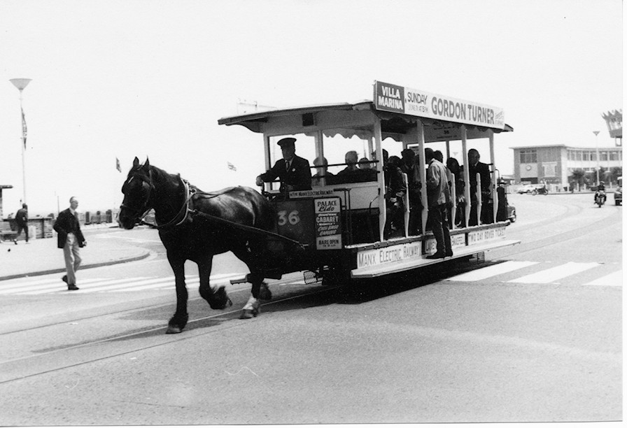 The famous horse tram.